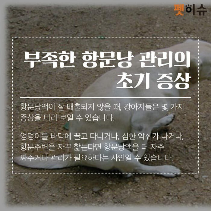 KakaoTalk_20190117_213500487.jpg
