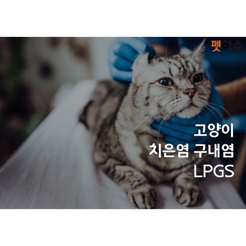 KakaoTalk_20190102_133805038.jpg