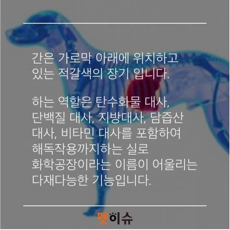 KakaoTalk_20190509_230556822.jpg