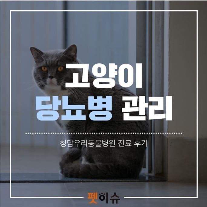 KakaoTalk_20190509_230909931.jpg
