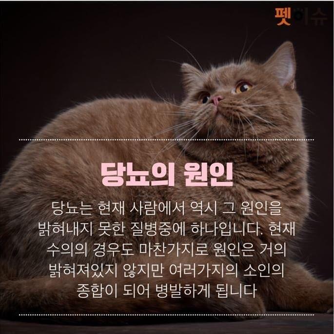 KakaoTalk_20190509_230911112.jpg